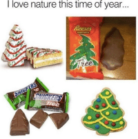 I really do: love nature this time of year.  Reeses  ne I really do