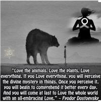 Memes, 🤖, and Divinity: Love the animals Love the plants, Love  everything. lf you Love everything, you will perceive  the divine mystery in things. Once you perceive it,  you will begin to comprehend it better every day.  And you will come at last to Love the whole world I think I just cried at how poignant this is..