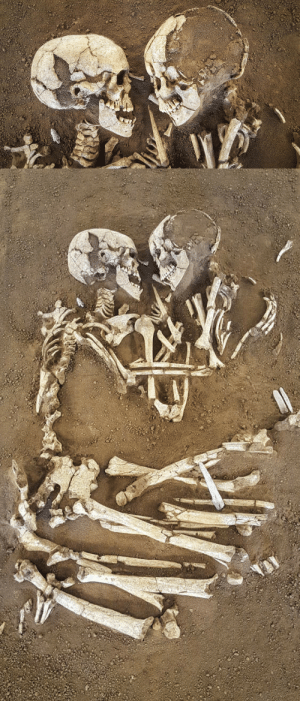 Love, Tumblr, and Wikipedia: love:  The Lovers of Valdaro, discovered by archaeologists at a tomb in San Giorgio near Mantua, Italy. The couple have been holding one another for 6,000 years.