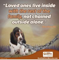 """dvm: """"Loved ones live inside  with the rest of the  family not chained  outside alone.""""  Karen Becker, DVM  Healthy  Presented by Mercola.com  Healthy Pets.Mercola.com  iStock com tjyler"""