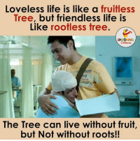 What's Life Without Friends...: Loveless life is like a fruitless  Tree, but friendless life is  Like rootless tree.  LA GHING  The Tree can live without fruit,  but Not without roots!! What's Life Without Friends...