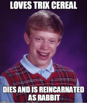 Bad Luck Brian Meme - Imgflip: LOVES TRIX CEREAL  DIES AND IS REINCARNATED  AS RABBIT  imgflip.com Bad Luck Brian Meme - Imgflip