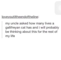 how-many-lives: loveyoutiltheendoftheline:  my uncle asked how many lives a  galifreyan cat has and i will probably  gallifreyan cat has and i will probably  be thinking about this for the rest of  my life