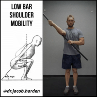 Anna, Broomstick, and Memes: LOW BAR  SHOULDER  MOBILITY  Hip Angle  Knee Angie  ack Angle  dr.jacob harden OPEN YOUR SHOULDERS FOR LOW BAR SQUATS A lot of people want to low bar squat due to the extra glute and hip focus as well as being able to move more weight, but it often gives a lot of people trouble, with one of the main reasons being shoulder mobility.🙁 Getting into the low bar position requires a good amount of shoulder external rotation. This 3 drill routine will help you build that.😃 . It goes like this: . ☝Open up the passive joint range of motion. This drill can be done with a PVC pipe as I show here or a broomstick at home. Don't crank too far too quick. Ease in and let it open up gradually. Contract-Relax or PNF works really well here too. . ✌Get more specific to the squat position and pull the elbows under actively. I suggest starting in high bar and then gradually going down as you get looser. . 👌Build some strength in the new position by pressing up and pulling back down without letting the shoulders flare out or the back hyperextend. This helps lock in mobility long term. . If you've ever wanted to low bar, this one can help you get there. ⚠Don't rush it as you don't want to end up with shoulder or elbow irritation. Be patient, put in the work, and you'll get there. . Tag a friend who needs better shoulder mobility and share the wealth! . 🎵 - Anna Mae - Savages . MyodetoxOrlando Myodetox