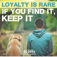 mercola: LOYALTY IS RARE  IF YOU FIND IT  KEEP IT  Healthy  With Dr. Karen Becker  Healthy Pets Mercola.com