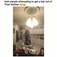 Lol his accent makes this 10x funnier 👉🏽(via:@tadhg_fleming): lrish people attempting to get a bat out of  Their kitchen Lol his accent makes this 10x funnier 👉🏽(via:@tadhg_fleming)