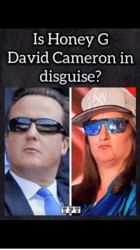 David: ls Honey G  David Cameron in  disguise?  Y PT