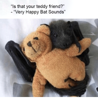 "Happy, Bat, and Friend: ""ls that your teddy friend?""  ""Very Happy Bat Sounds"" Bat friend"