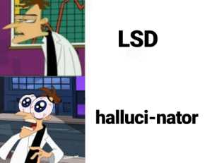 Perry the platypus was a mere hallucination: LSD  halluci-nator  u/saen-rex Perry the platypus was a mere hallucination