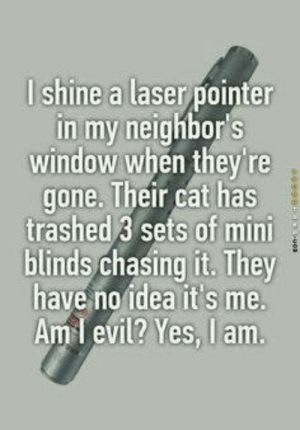 Dank, Evil, and 🤖: lshine a laser pointer  in my neighbor s  window when they're  gone. Their cat has  trashed 3 sets of min  blinds chasing it. They  have no idea it's me.  Aml evil? Yes, I am