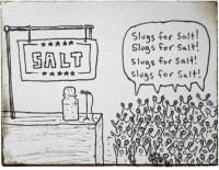 salt: LT  slugs for salt!  slugs for salt!  slugs for Salt!  slugs for Salt!