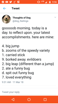 <p>Thoughts of Dog is a wholesome gold mine</p>: LTE  9:56  Tweet  Thoughts of Dog  adog feelings  gooooob morning. today is a  day. to reflect upon. your latest  accomplishments. here are mine  4. big jump  b. zooms of the speedy variety  1. carried stick  9. borked away. evildoers  2. big leap (different than a jump}  2. ate a funny bug  d. spit out funny bug  7. loved everything  9:31 AM 11 Mar 18  Tweet your reply <p>Thoughts of Dog is a wholesome gold mine</p>