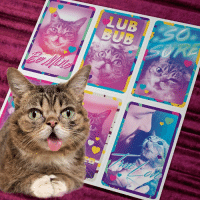 Be a Valentine's Day hero with BUB's Retro Tear-Away Valentines, limited edition necklaces, pillows, blankets and more at http://bit.ly/BUBVday  A portion of all proceeds benefit Lil BUB's Big FUND for special needs pets.: LUB  BUB Be a Valentine's Day hero with BUB's Retro Tear-Away Valentines, limited edition necklaces, pillows, blankets and more at http://bit.ly/BUBVday  A portion of all proceeds benefit Lil BUB's Big FUND for special needs pets.
