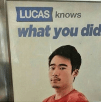 Anime, Funny, and Instagram: LUCAS  knows  what you did my mom is unbelievable some times - - memes dankmemes tumblr lmao relatable cancer love kys funny wtf earrape cringe autism shrek followback amazing furries comedy anime igers kms trump smile playstation xbox idubbbz spongebob instagramers youtube instagram