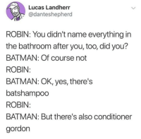 Batman, Robin, and Yes: Lucas Landherr  @danteshepherd  ROBIN: You didn't name everything in  the bathroom after you, too, did you?  BATMAN: Of course not  ROBIN  BATMAN: OK, yes, there's  batshampoo  ROBIN  BATMAN: But there's also conditioner  gordon