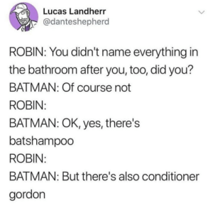 Batman, Tumblr, and Blog: Lucas Landherr  @danteshepherd  ROBIN: You didn't name everything in  the bathroom after you, too, did you?  BATMAN: Of course not  ROBIN  BATMAN: OK, yes, there's  batshampoo  ROBIN  BATMAN: But there's also conditioner  gordon copperbadge:  CONDITIONER GORDON
