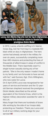 "Dogs, Family, and Memes: Lucca, hero Marine Dog who lost her leg In Afghanistan,  became first American canine to receive the  prestigious Dickin Medal   In 2012, Lucca, a bomb-sniffing U.S. Marine  Corps dog, lost her front leg in a roadside IED  blast while on duty in Afghanistan. The hero  canine had already served in the military for  over six years, successfully completing more  than 400 missions and protecting the lives of  thousands of allied troops in areas of conflict in  the Middle East. There reportedly wasn't a  single human casualty during any of her  patrols. ""She is the only reason I made it home  to my family and I am fortunate to have served  with her,"" said Gunnery Sgt. Chris Willingham,  who now cares for Lucca.  On 5 April 2016 Lucca was recognized for her  years of service and heroism and the 12-year-  old German shepherd received the prestigious  Dickin Medal, described as the animal  equivalent of the Victoria Cross, which is the  highest military decoration awarded for valor in  the U.K  Many forget that there are hundreds of brave  k9s working by the side of our troops daily  protecting our freedom. Thank you Lucca and  to all of our military working dogs for your  service!髫 Thank you Lucca for your service 🇺🇸🐶 https://t.co/mR8Slf5TkY"