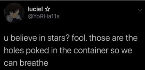 container: luciel  @YoRHa11s  u believe in stars? fool. those are the  holes poked in the container so we  can breathe