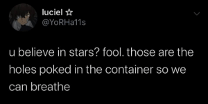 : luciel  @YoRHa11s  u believe in stars? fool. those are the  holes poked in the container so we  can breathe