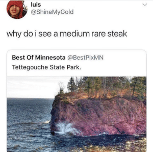 My fatass saw steak by Normified FOLLOW HERE 4 MORE MEMES.: luis  @ShineMyGold  why do i see a medium rare steak  Best Of Minnesota @BestPixMN  Tettegouche State Park. My fatass saw steak by Normified FOLLOW HERE 4 MORE MEMES.