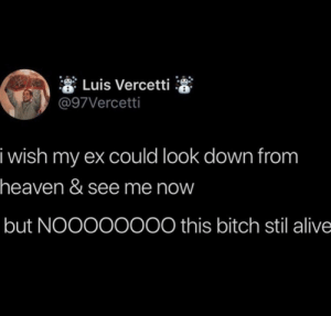 Meirl: * Luis Vercetti  @97Vercetti  i wish my ex could look down from  heaven & see me now  but NOO000000 this bitch stil alive Meirl