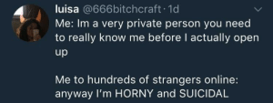 Horny, Irl, and Me IRL: luisa @666bitchcraft.1d  Me: Im a very private person you need  to really know me before I actually open  up  Me to hundreds of strangers online:  anyway I'm HORNY and SUICIDAL Me IRL