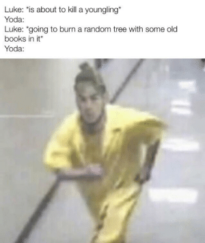 You must unlearn what you have learned: Luke: is about to kill a youngling*  Yoda:  Luke: *going to burn a random tree with some old  books in it*  Yoda: You must unlearn what you have learned