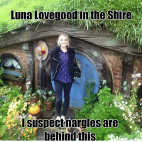 Memes, 🤖, and Luna: Luna Lovegood in the Shire  suspectnarg lesare  behind thfs