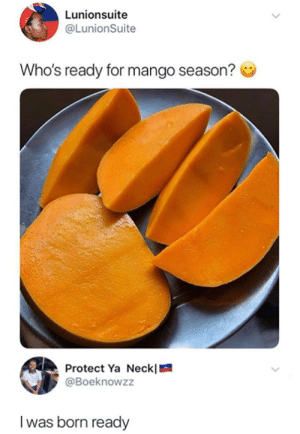 Dank, Mango, and 🤖: Lunionsuite  @LunionSuite  Who's ready for mango season?  Protect Ya Neckl  @Boeknowzz  I was born ready Need me some mango's right now.