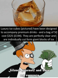 Have you ever been so fancy...: Luxury ice cubes (pictured) have been designed  to accompany premium drinks and a bag of 50  cost $325 (£194). They are perfectly clear and  are individually cut form giant blocks of ice  Silence yourself and have  my  currency Have you ever been so fancy...