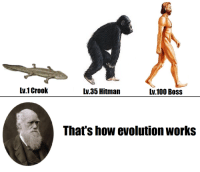 Anaconda, Evolution, and Time: Lv.1 Crook  Lv 35 Hitman  lv.100 Bos:s  That's how evolution works Charles Darwin presents his theory of evolution for the first time (1859)