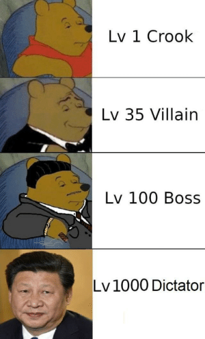 The Missing Piece: Lv 1 Crook  Lv 35 Villain  Lv 100 Boss  Lv1000 Dictator The Missing Piece