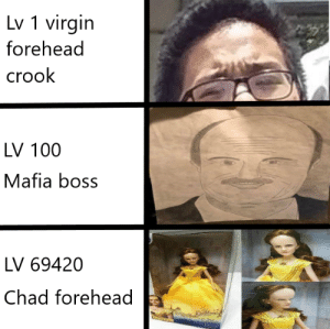 time to bring back mafia city meme cause thats how mafia works: Lv 1 virgin  forehead  crook  LV 100  Mafia boss  LV 69420  Chad forehead time to bring back mafia city meme cause thats how mafia works