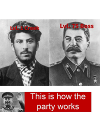 To the gulag with u: Lvl. 75 Boss  Lvl. 1 Crook  This is how the  party works To the gulag with u