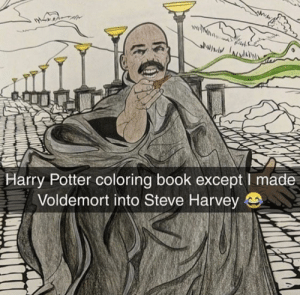 Harry Potter, Memes, and Steve Harvey: lwiv  Harry Potter coloring book except I made  Voldemort into Steve Harvey e Poor Voldemort via /r/memes https://ift.tt/2RlCoWG