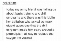 stupid questions https://t.co/um2sVAqgHd: lydiallama:  today my army friend was telling us  about basic training and drill  sergeants and there was this kid in  her battalion who asked so many  stupid questions that the drill  sergeant made him carry around a  potted plant all day to replace the  oxygen he wasted stupid questions https://t.co/um2sVAqgHd