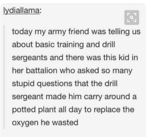 A waste of oxygen: lydiallama:  today my army friend was telling us  about basic training and drill  sergeants and there was this kid in  her battalion who asked so many  stupid questions that the drill  sergeant made him carry around a  potted plant all day to replace the  oxygen he wasted A waste of oxygen