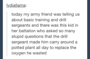 In honor of Veterans day.omg-humor.tumblr.com: lydiallama:  today my army friend was telling us  about basic training and drill  sergeants and there was this kid in  her battalion who asked so many  stupid questions that the drill  sergeant made him carry around a  potted plant all day to replace the  oxygen he wasted In honor of Veterans day.omg-humor.tumblr.com