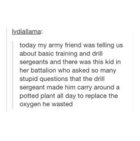 Memes, Army, and Oxygen: lydiallama:  today my army friend was telling us  about basic training and drill  sergeants and there was this kid in  her battalion who asked so many  stupid questions that the drill  sergeant made him carry around a  potted plant all day to replace the  oxygen he wasted @itstumblrhumor