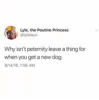Memes, Princess, and Time: Lyle, the Poutine Princess  @lylelaun  Why isn't peternity leave a thing for  when you get a new dog  9/14/18, 1:56 AM Can I go on peternity leave even though I've had my dog for 7 years? He needs cuddles all the time! Tw lylelaun