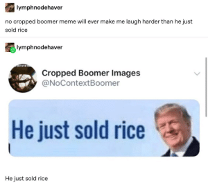 25+ Great Tumblr Posts That Are Worth Watching #funny #funnymemes #memes #lol #rofl #humor #tumblr: lymphnodehaver  no cropped boomer meme will ever make me laugh harder than he just  sold rice  lymphnodehaver  Cropped Boomer Images  @NoContextBoomer  He just sold rice  He just sold rice 25+ Great Tumblr Posts That Are Worth Watching #funny #funnymemes #memes #lol #rofl #humor #tumblr