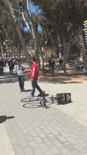 School, Singing, and Tumblr: lynchbrothers:So these Christian anti-feminist protestors showed up at my school and were just yelling misogynist things at everyone, when this guy suddenly walks up in front of them mid-rant and just starts…. singing opera