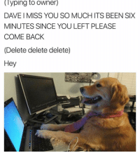 Memes, 🤖, and Dave: lyping to Owner)  DAVE I MISS YOU SO MUCH ITS BEEN SIX  MINUTES SINCE YOU LEFT PLEASE  COMEBACK  (Delete delete delete)  Hey  intro  Funny Cute