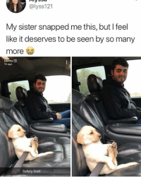 Memes, 🤖, and Doggo: @lyss121  My sister snapped me this, but l feel  like it deserves to be seen by so many  more  Leemy 1  1h ago  Safety first! 🤣😍Cute doggo