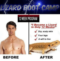 """Boot Camp: LZARD BOOT CAMP  12 WEEK PROGRAM  """"Became a Lizard  in Only 12 Weeks!""""  Dry, scaly skin  Four legs  A will to live  BEFORE  AFTER"""