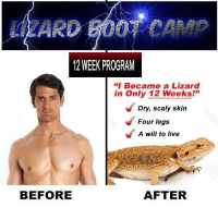 "Live, Camp, and Skin: LZARD BOOT CAMP  12 WEEK PROGRAM  ""I Became a Lizard  in Only 12 Weeks!""  139  Dry, scaly skin  Four legs  A will to live  BEFORE  AFTER"