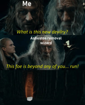 Asbestos removal wizard: Mе  What is this new devilry?  Asbestos removal  wizard  This foe is beyond any of you... run! Asbestos removal wizard