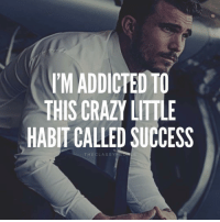 Crazy, Memes, and Addicted: M ADDICTED TO  THIS CRAZY LITTLE  HABIT CALLED SUCCESS  THECLASSYPE Are you addicted? Type YES if you are💯 - Via @theclassypeople