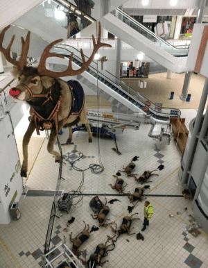 All of the other reindeer used to laugh and call him names…so he killed them; killed them all: M All of the other reindeer used to laugh and call him names…so he killed them; killed them all