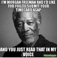 Meme, Morgan Freeman, and Image: M MORGAN FREEMAN AND I'D LIKE  FOR YOU TO SUBMIT YOUR  TIMECARD ASAP  AND YOU JUST READ THAT IN MY  VOICE  MemesMappe time card meme - Yahoo Search Results Yahoo Image Search Results